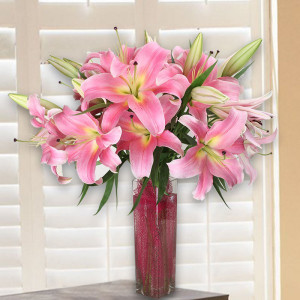 Soft Pink Lilies