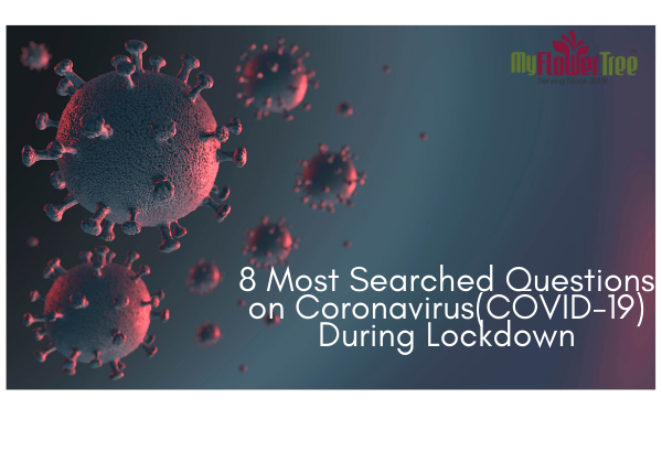 7 Most Searched Questions During Coronavirus(COVID-19)-4