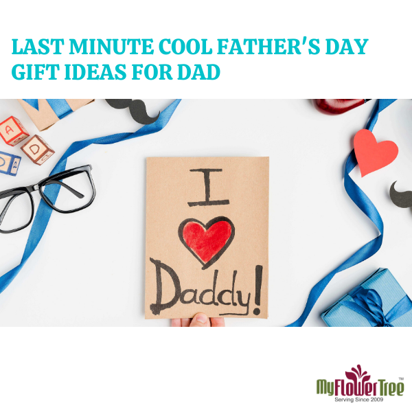 Last Minute Cool Father's Day Gift Ideas For Dad