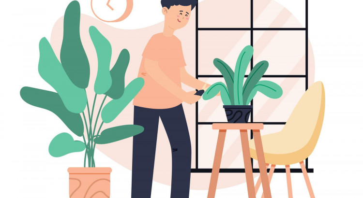 Plants Helps you to fight with stress