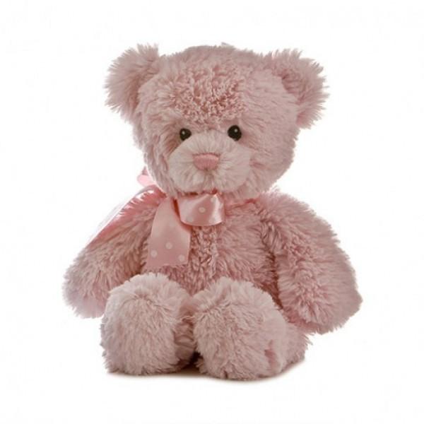Lovely teddy bear gift for sister