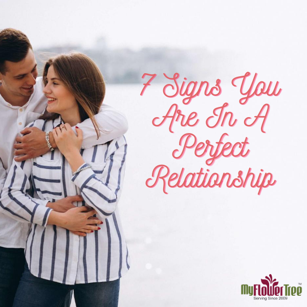 7 Signs You Are In A Perfect Relationship