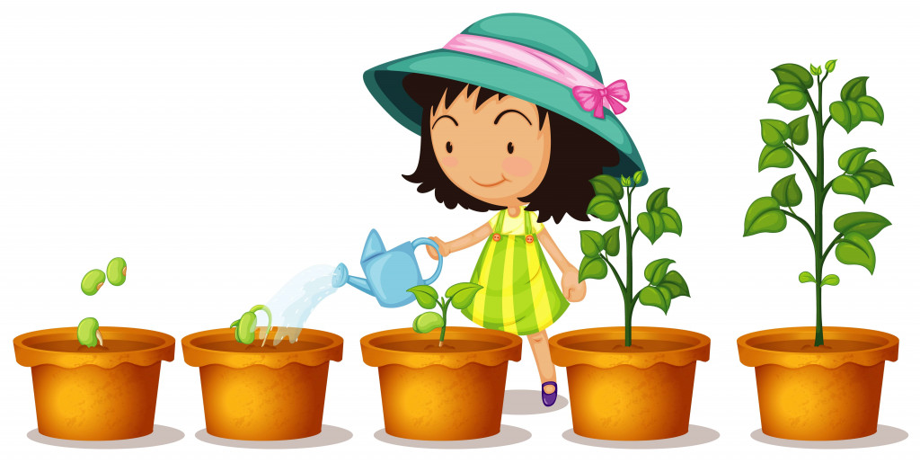 give plants to water daily
