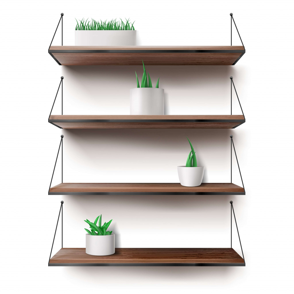 keep plants on shelf