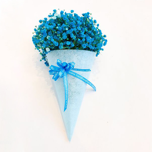 Cone-shaped bouquet