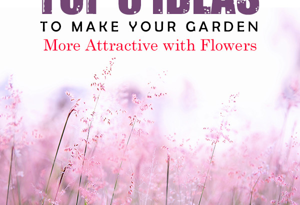 Top 8 Ideas to Make Your Garden More Attractive with Flowers