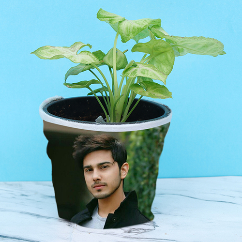 Personalized plant