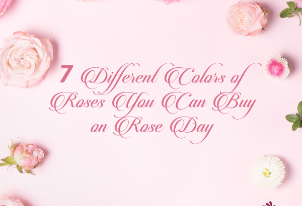 various roses for rose day