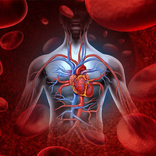 Avert from possibilities of hypertension