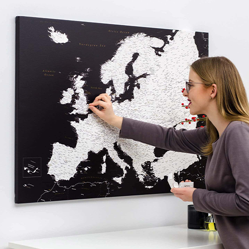 Push-pin World Map
