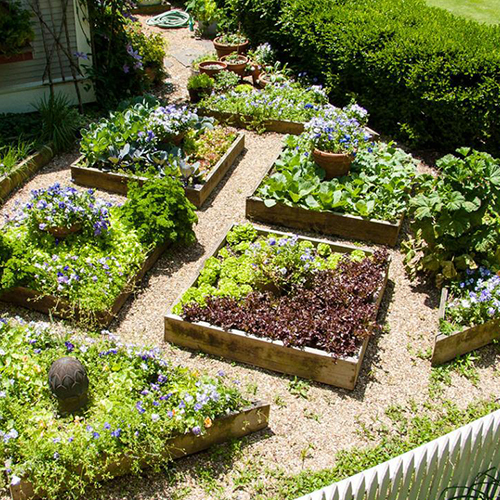 Where are you planning to locate your garden