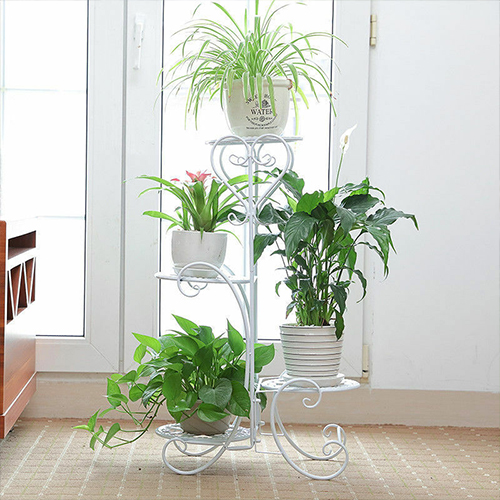 What are the plants suitable to incorporate into the indoor garden