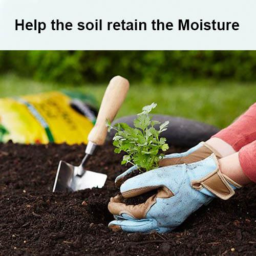 Help the soil retain the Moisture