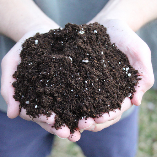 The right soil