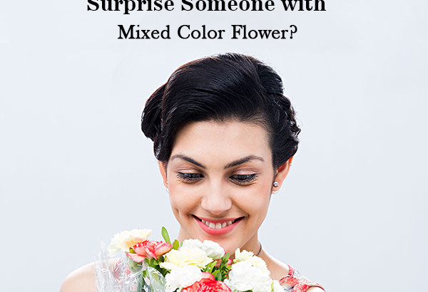 Mixed Color Flower Feature image
