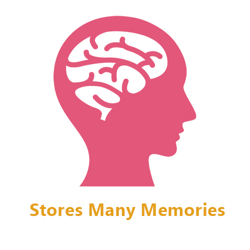Stores Many Memories