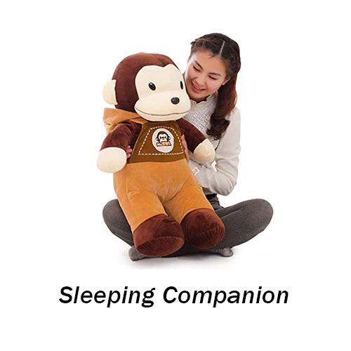 Sleeping Companion
