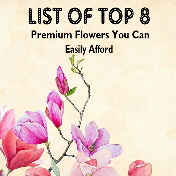 List Of Top 8 Premium Flowers You Can Easily Afford