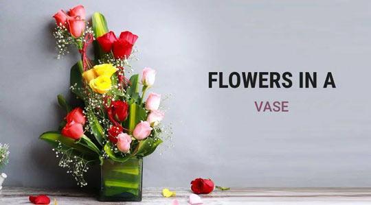 flower-in-vase