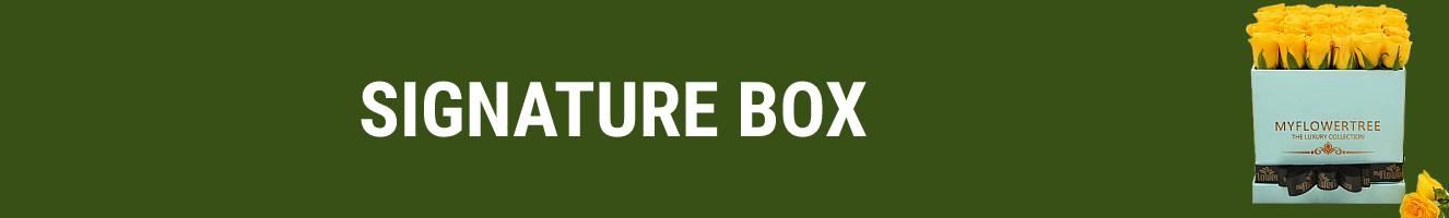Signature Box