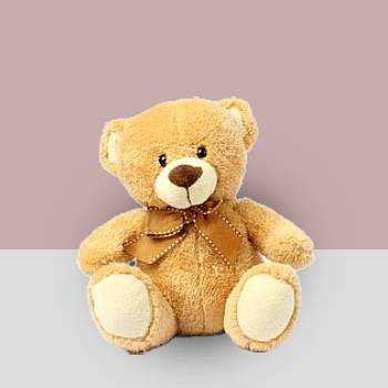 10 inch medium Teddy