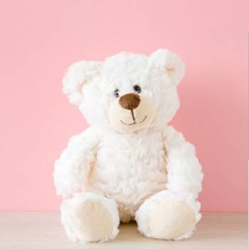 Large Teddy