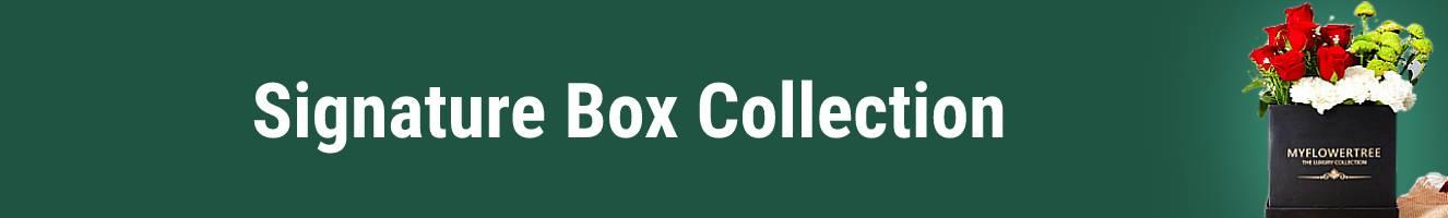 Signature Box Collection