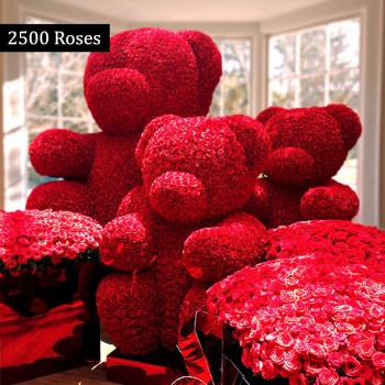 2500 Red Roses Special Arranged in the Shape of Teddy