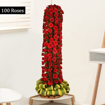 3 feet tall arrangement of 100 red roses in a Basket