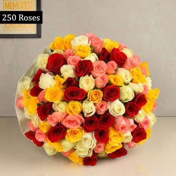 250 Mixed Roses with Paper Packing
