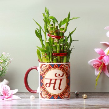 One Ma Printed Mahroon Handle Mug and Two Layer Lucky Bamboo Plant