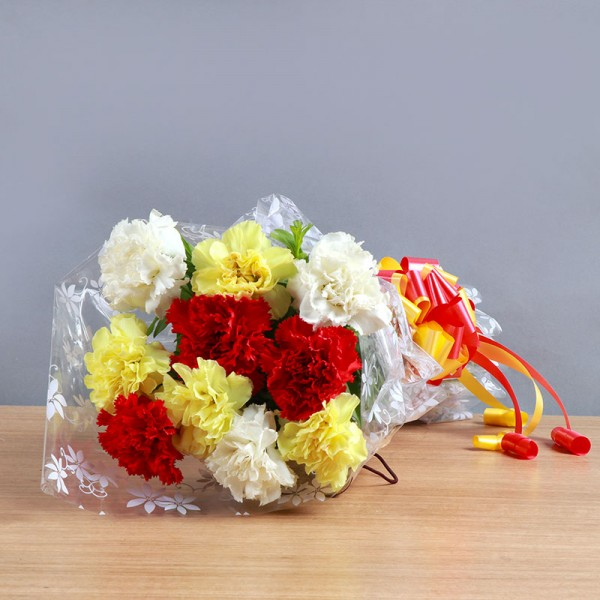 10 Mixed Carnations
