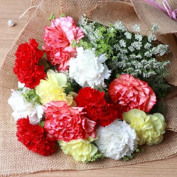 Jute Packed Carnations