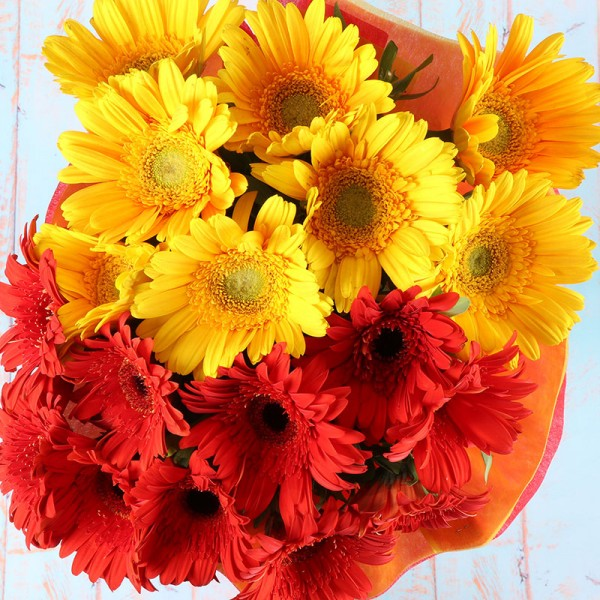 Red and Yellow Gerberas