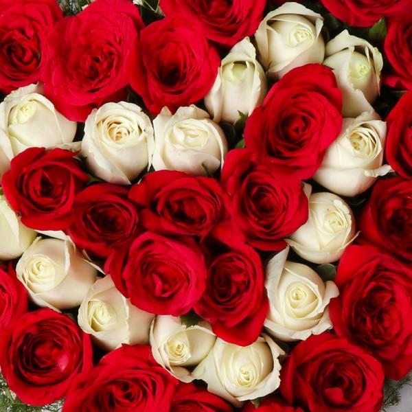 60 Roses Arrangement