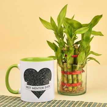 Best Mentor Mug with Two Layer Lucky Bambo