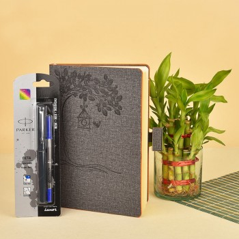 1 Grey Diary with ruled sheets, graph sheet, slips sheets inside (6x8.5 inches) and 1 Parker pen gift set (beta standard roller ball) with 2 layer Lucky Bamboo in a Glass vase