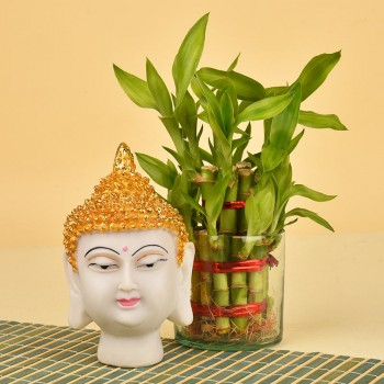 A 6-inches Gautam Buddha Face Idol (Polyresin) - 2 layer Lucky Bamboo in a Glass vase