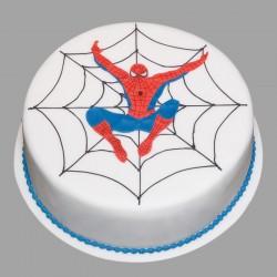 Heroic Spiderman Cake