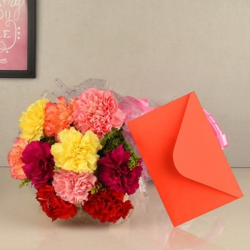 10 Colorful Carnation in Cellophane Packing with Greeting Card