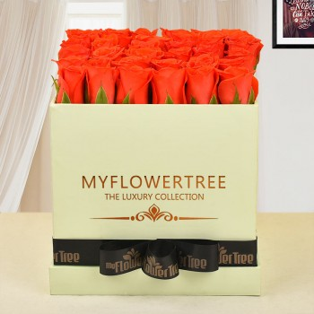 30 orange roses in lime green box tied with black ribbon