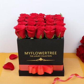 25 Red Roses in Black MFT Luxury Box
