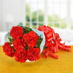 Vibrant Red Carnations