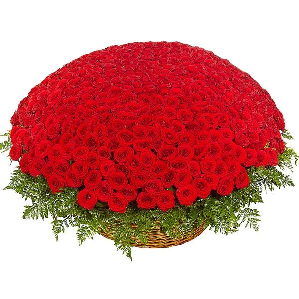 1000 Red Roses Basket Arrangement
