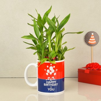Happy Birthday Printed Coffee Mug with Lucky Bamboo