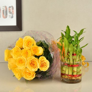 12 Yellow roses with 2 layer lucky bambo in a glass vase