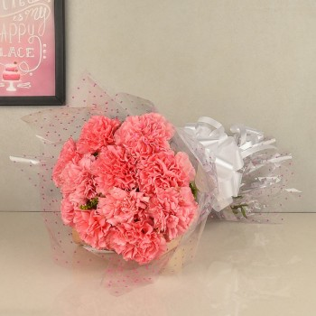 Lovely Pink Carnations