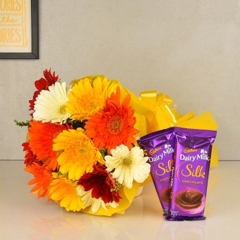 12 Colorful Gerberas in Yellow Paper packing, Yellow Bow with 2 Cadbury's DairyMilk Silk (60 gms each)