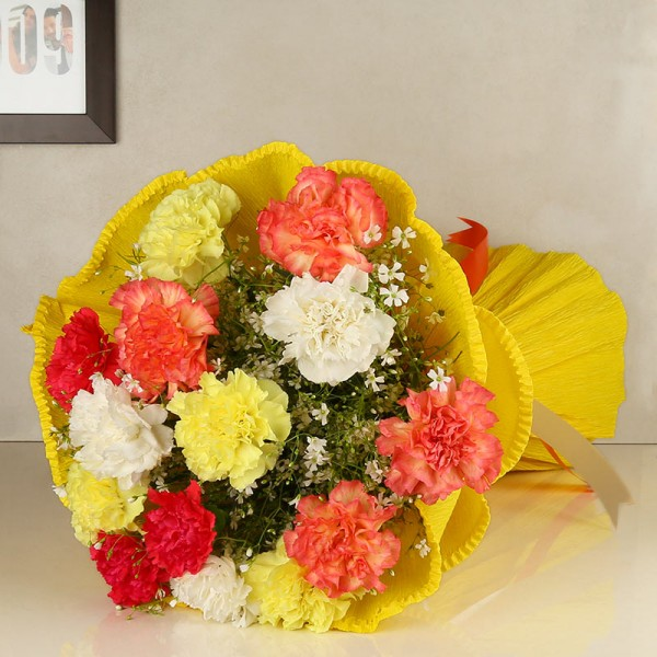 15 Colorful Carnation in paper packing