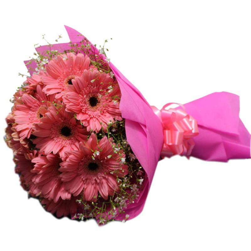 Entailing Pink Carnations